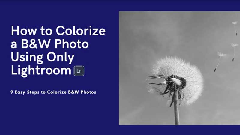 How to Colorize a B&W Photo Using the Only Lightroom