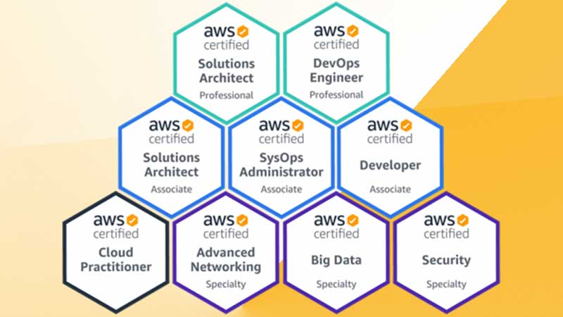Professional-level AWS Certifications