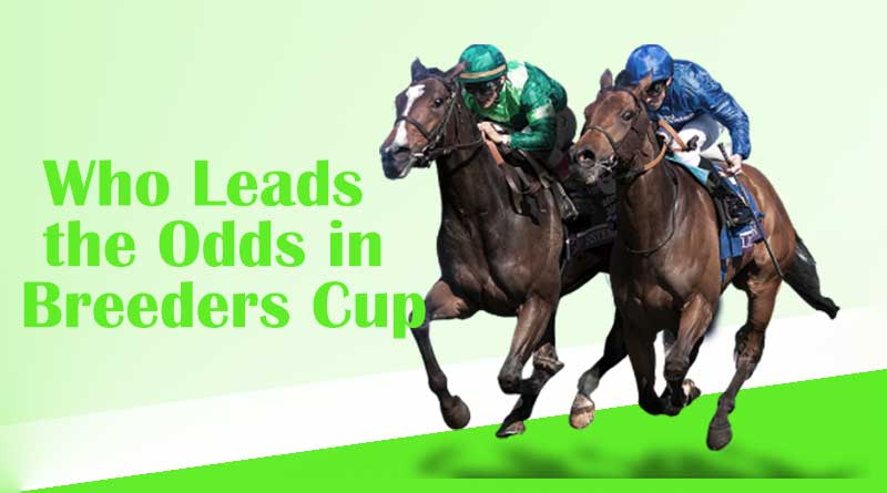 Who Leads the Odds in Breeders Cu